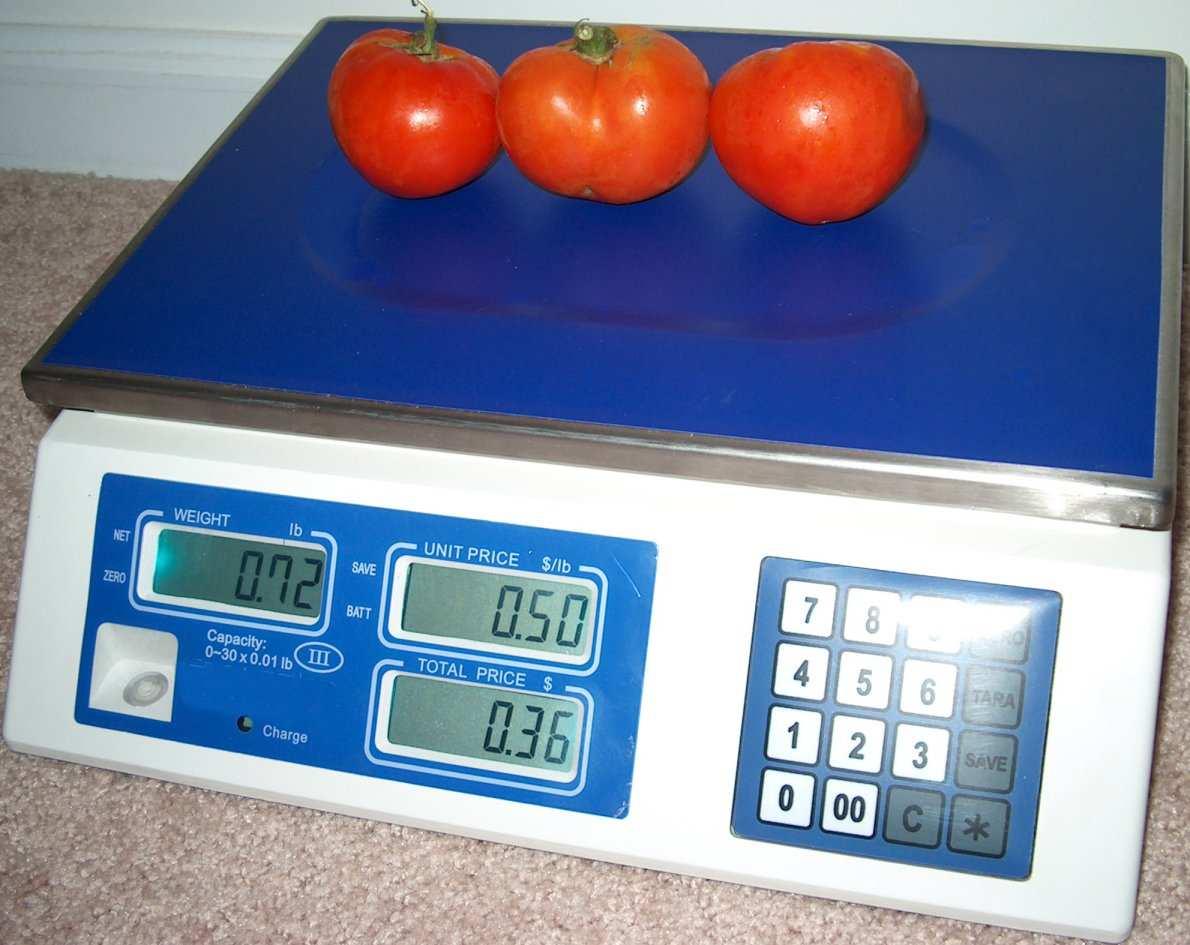 Master Scale CM 101